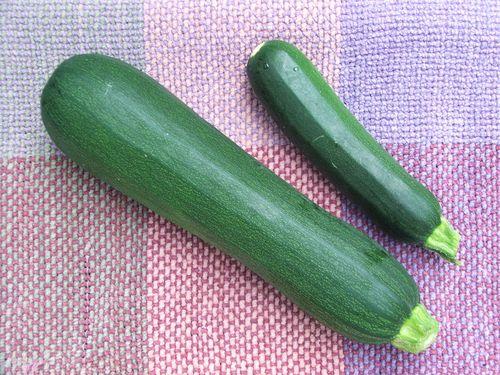 100705 001 - Zucchinis