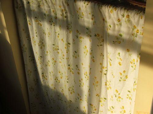100908 003 - curtain