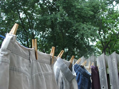 100730 005 - Laundry on line