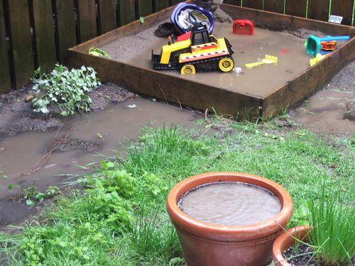 DSCF2481 - Muddy yard