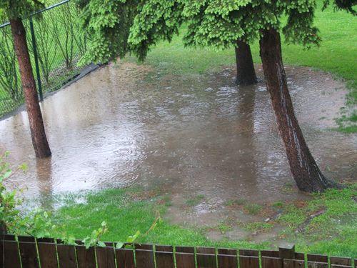 DSCF2492 - Giant puddle