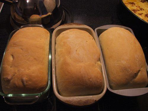 DSCF3351 - Freshly Baked Bread