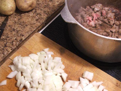 DSCF4107 - Chopped Onions