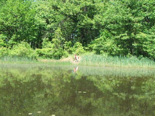 DSCF2637 - Pond