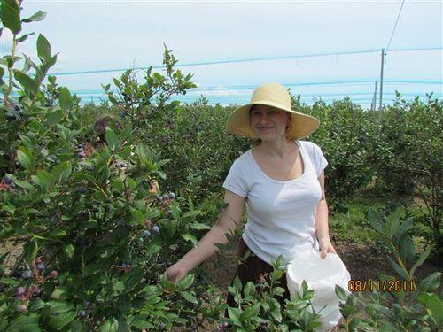 IMG_1052 Me picking Berries