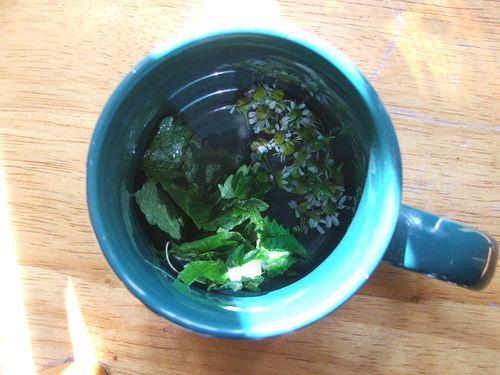 DSCF3449 - Calming Tea